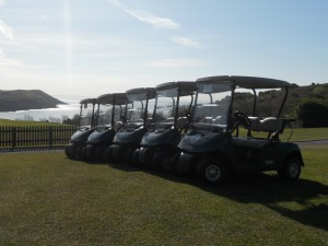9 Buggies available for hire.